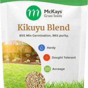 Kikuyu Grass Seed Blend