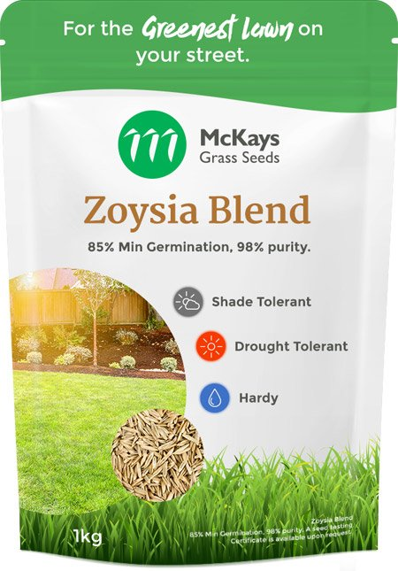 Compadre Zoysia Grass Seed Blend